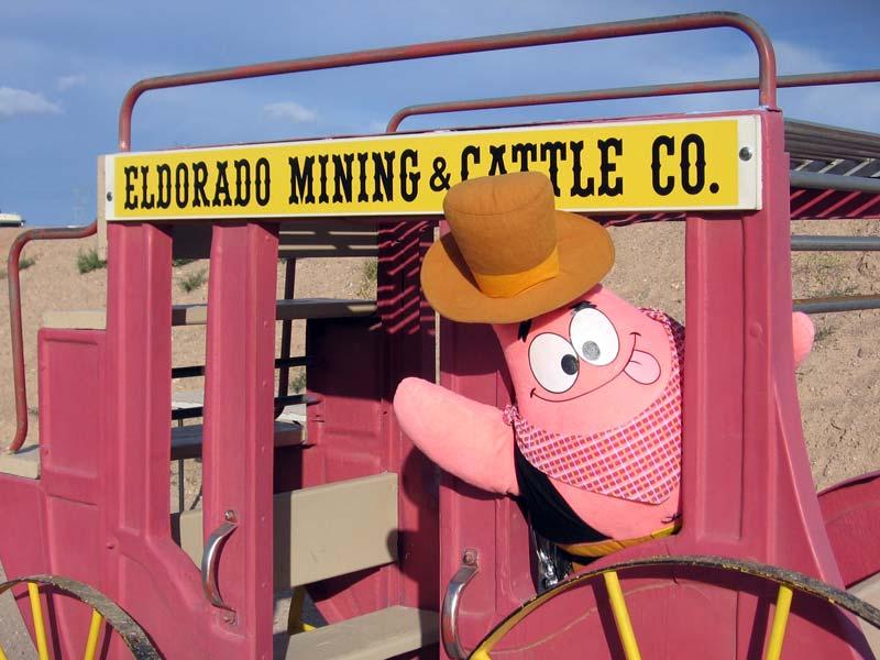 Cowboy's Damn Site